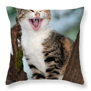 Yawning Cat Throw Pillow