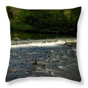 Ye Olde River Wye Throw Pillow