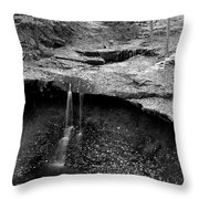 Years Of Erosion Throw Pillow