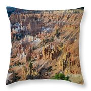 Years Of Wear Throw Pillow