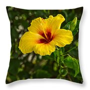 Yellow - Beautiful Hibiscus Flowers In Bloom On The Island Of Maui. Throw Pillow