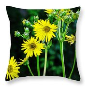 Yellow Achieve Throw Pillow
