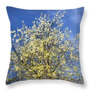 Yellow And Blue - Blooming Tree In Spring Throw Pillow