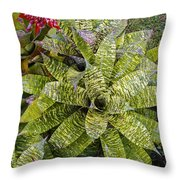 Yellow And Green Bromeliad Throw Pillow