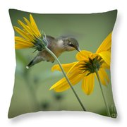 Yellow And Green Throw Pillow