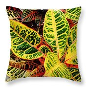 Yellow And Green Croton Throw Pillow