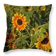Yellow And Orange Sunflowers Throw Pillow
