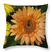Yellow And Peach Daisy Throw Pillow