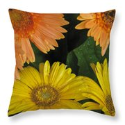 Yellow And Peach Throw Pillow