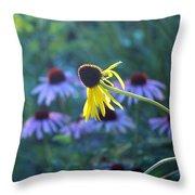 Yellow  And Purple Coneflowers Throw Pillow