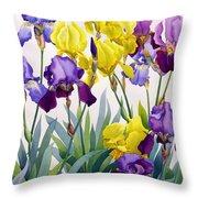 Yellow And Purple Irises Throw Pillow