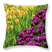 Yellow And Purple Tulips Throw Pillow
