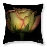 Yellow And Red Rose Throw Pillow