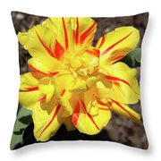 Yellow And Red Tulip Throw Pillow