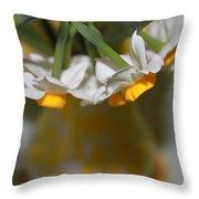 Yellow And White Throw Pillow