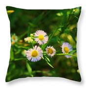 Yellow And White Dasies Throw Pillow
