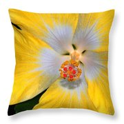 Yellow And White Hibiscus Throw Pillow
