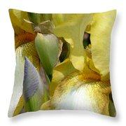 Yellow And White Iris Throw Pillow