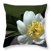 Yellow And White Peony Flower Throw Pillow