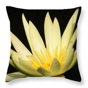 Yellow And Yellow Waterlily...   # Throw Pillow