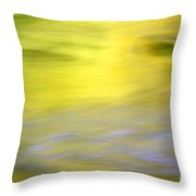 Yellow Autumn Reflections Throw Pillow