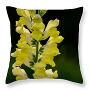 Yellow Beauty Throw Pillow
