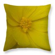 Yellow Begonia Throw Pillow