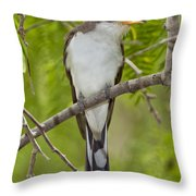 Yellow-billed Cuckoo Throw Pillow