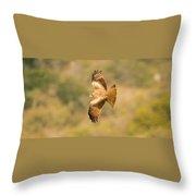 Yellow Billed Kite 7 Throw Pillow