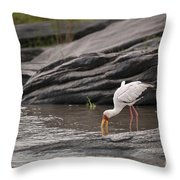 Yellow-billed Stork Fishing In River Throw Pillow