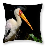 Yellow Billed Stork Peers At Camera Throw Pillow