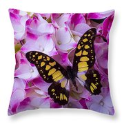 Yellow Black Butterfly On Hydrangea Throw Pillow