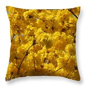 Yellow Blossoms Of A Tabebuia Tree Throw Pillow
