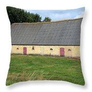 Yellow Brick Barn Throw Pillow