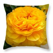 Yellow Buttercup Throw Pillow