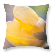 yellow buttercup flower II Throw Pillow