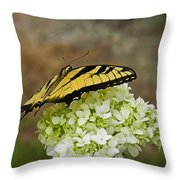 Yellow Butterfly 2 Throw Pillow