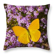 Yellow Butterfly On Pink Flowers Throw Pillow