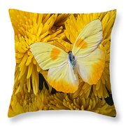 Yellow Butterfly On Yellow Mums Throw Pillow