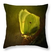 Yellow Butterfly Sitting On The Moss  Throw Pillow
