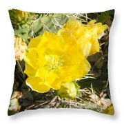 Yellow Cactus Blooms And Buds Throw Pillow