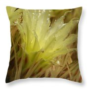 Cactus Blossom 2 Throw Pillow