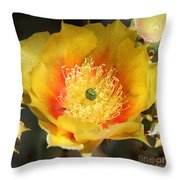 Yellow Cactus Flower Square Throw Pillow