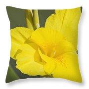 Yellow Canna 2 Throw Pillow