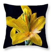 Yellow Canna Flower Throw Pillow