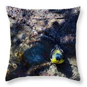Yellow Chested Birdy Throw Pillow