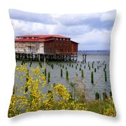 Yellow Columbia Throw Pillow
