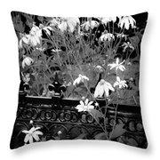 Yellow Coneflowers Echinacea Wrought Iron Gate Bw Throw Pillow