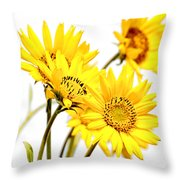 Yellow Country Wildflowers Throw Pillow