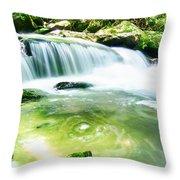Yellow Creek Falls Great Smoky Mountains Throw Pillow